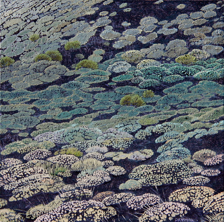 Karin Daymond The Day We Walked Up the Volcano I I 20 x 20cm oil on board