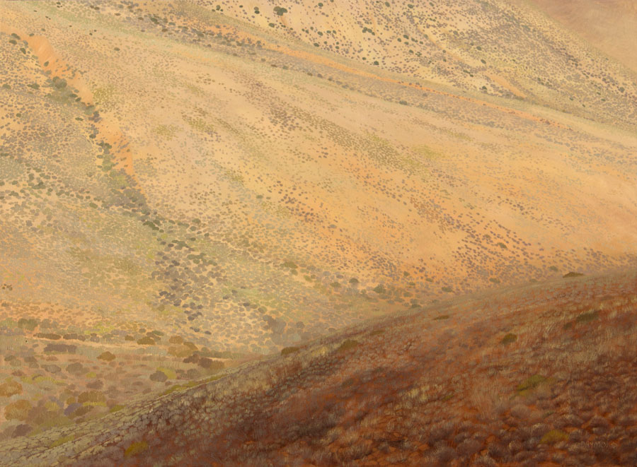 Karin Daymond Karoo the Exposed Slope 110x150cm large